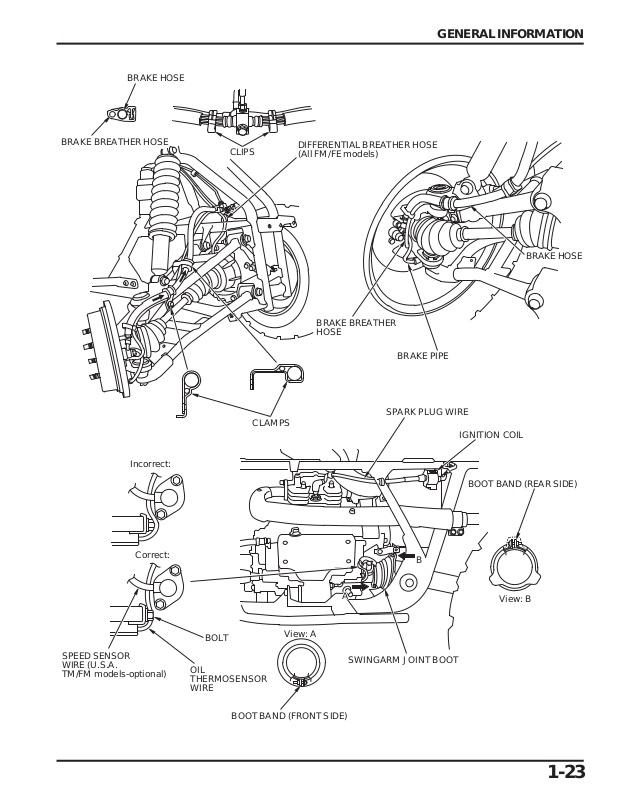 2002 Honda Fourtrax 350 Wiring Diagram