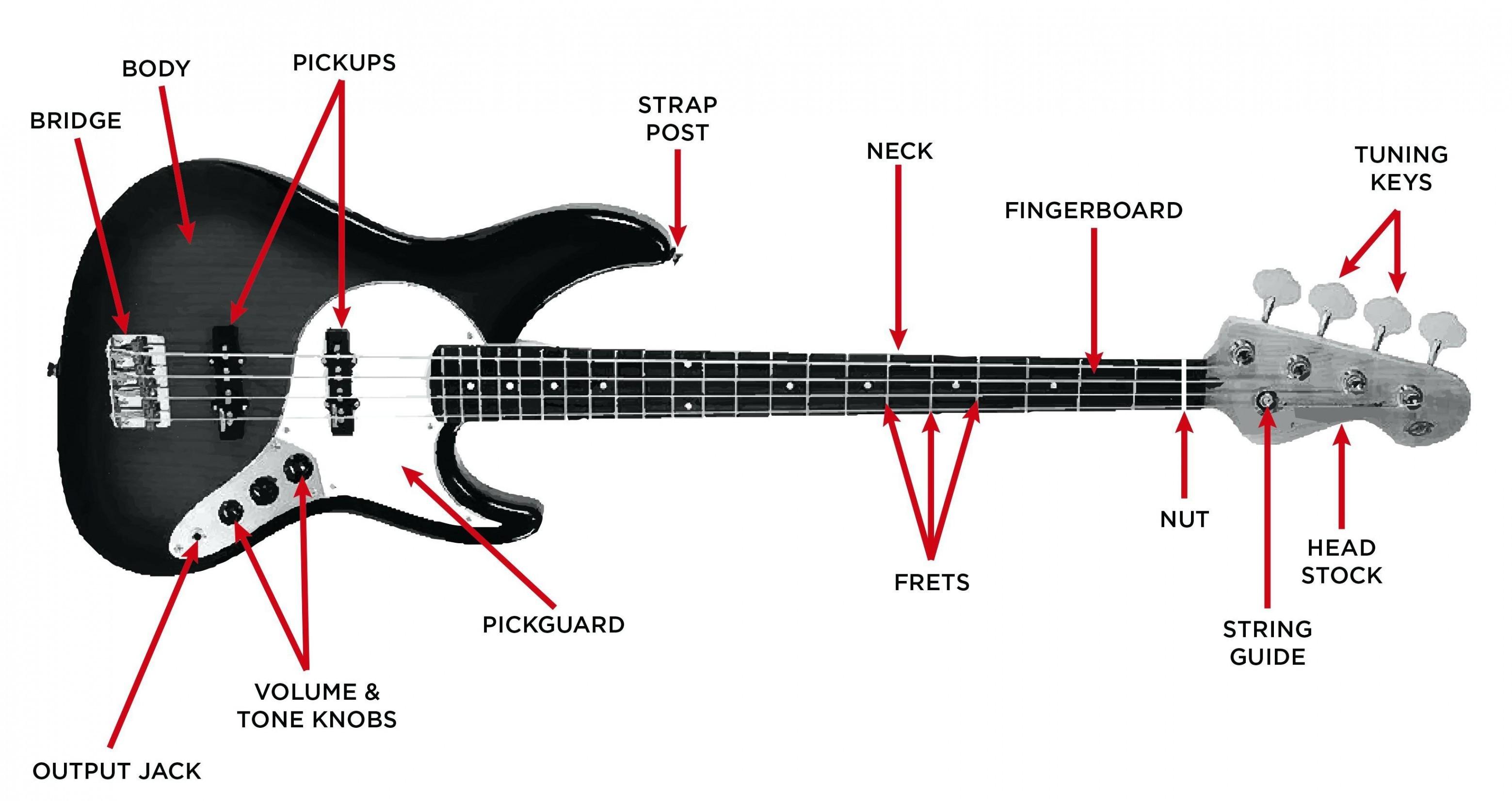 [SCHEMATICS_48IU]  LZ_7032] Stratocaster Wiring Harness Furthermore Fender Jazz Bass Pickup  Wiring Free Diagram | Fender Jazz Bass 24 Wiring Diagram |  | Kweca Venet Mohammedshrine Librar Wiring 101