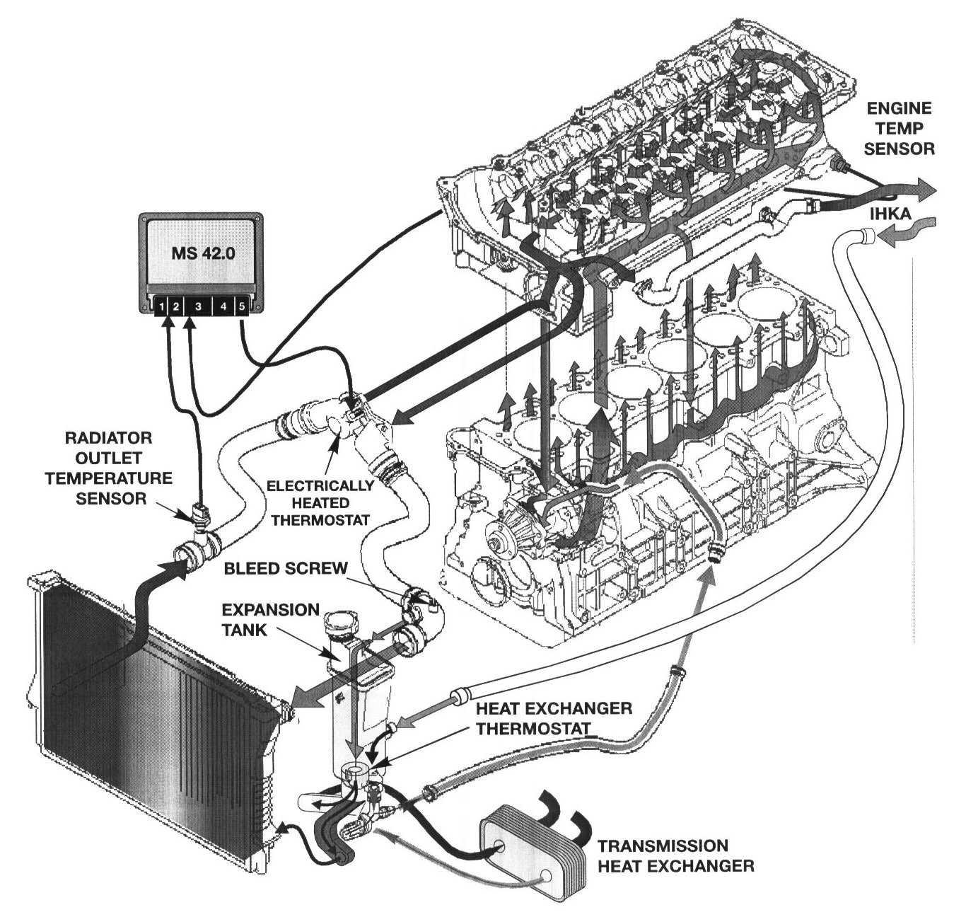 my_4361] bmw engine coolant bmw circuit diagrams  argu cosm skat peted phae mohammedshrine librar wiring 101
