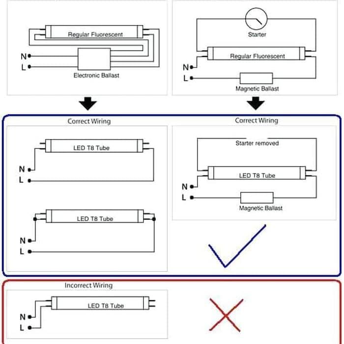 Diagram 2 Foot T8 Bulb Led Driver Wiring Diagram Full Version Hd Quality Wiring Diagram Homewiringdepot Parkhotelginevra It
