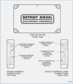 Fabulous Nissan 350Z Ecu Wiring Diagram 5 Ecu Nissan 350Z Nissan Es Diagram Wiring Cloud Loplapiotaidewilluminateatxorg