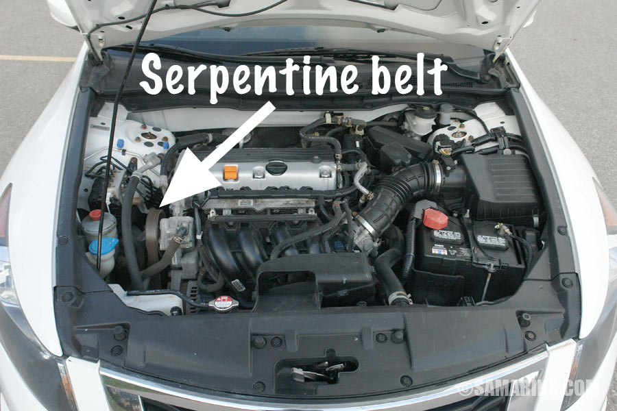 Stupendous Serpentine Belt Tensioner Problems Signs Of Wear When To Replace Wiring Cloud Grayisramohammedshrineorg
