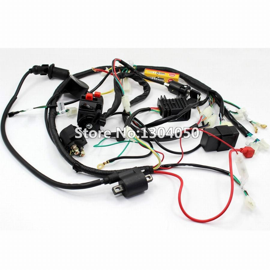 Terrific Full Electrics Wiring Harness Cdi Ignition Coil Key Spark Plug Wiring Cloud Onicaalyptbenolwigegmohammedshrineorg