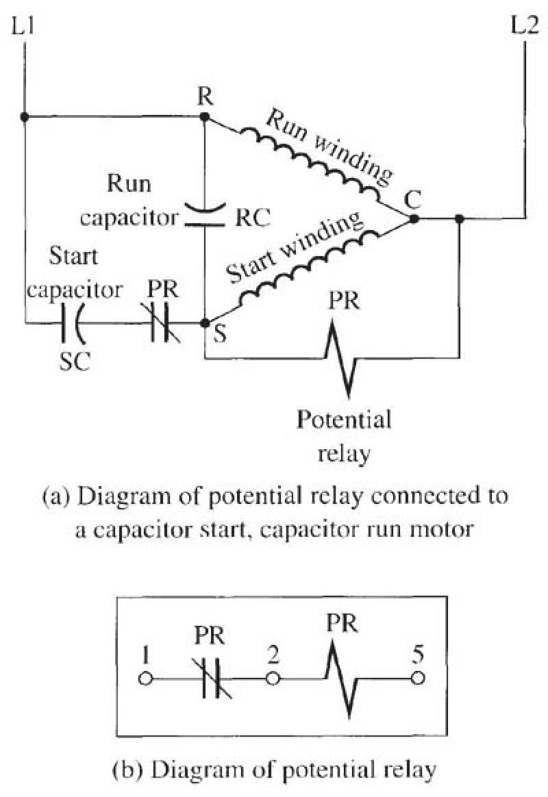 [TVPR_3874]  AS_9144] Single Phase Capacitor Start Induction Motor Wiring Diagram Wiring  Diagram | Wiring Diagram Of Single Phase Motor |  | Seme Simij Phae Mohammedshrine Librar Wiring 101