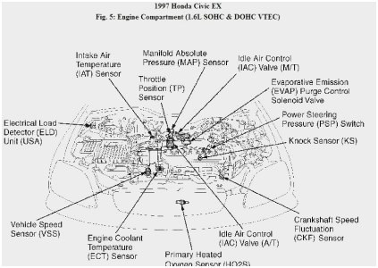 [OF_2317] Obd2Dlcpinout Wiring Diagram As Well Honda Civic Ecu Diagram On Schematic Wiring