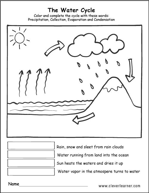 Peachy Water Diagram To Label Wiring Diagram Wiring Cloud Vieworaidewilluminateatxorg