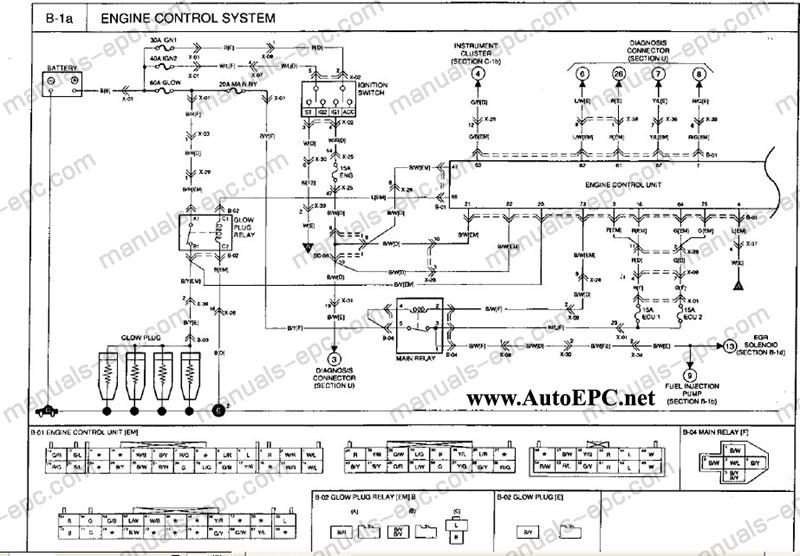 2002 Kia Sportage Window Wiring Diagram