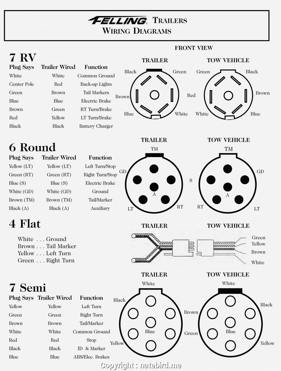 [DIAGRAM_5UK]  FV_8805] Semi Truck Pigtail Wiring Diagram Wiring Diagram | Truck To Trailer Wiring Diagram |  | Ariot Perm Bapap Sand Sapebe Mohammedshrine Librar Wiring 101