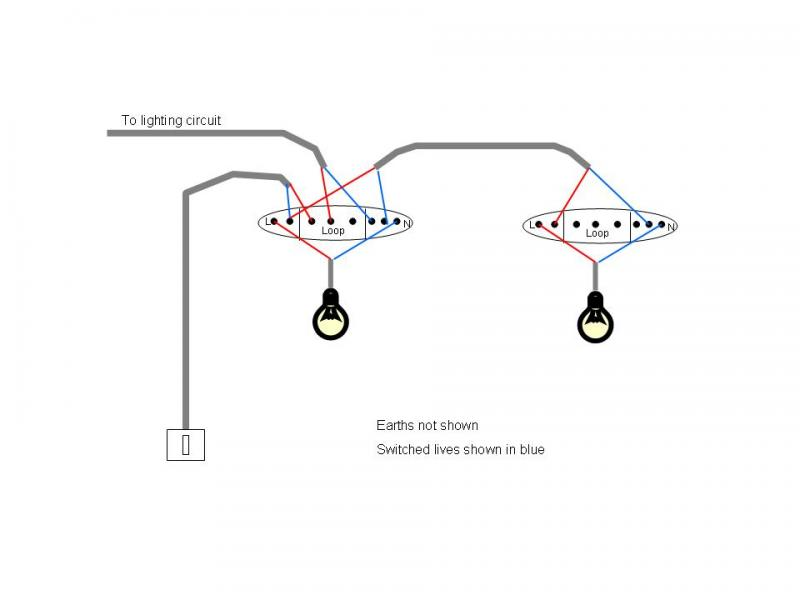 wiring diagram 1 switch 2 lights  house fuse box covers
