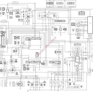 Miraculous Harley Davidson Wiring Diagram Free Wiring Diagram Wiring Cloud Counpengheilarigresichrocarnosporgarnagrebsunhorelemohammedshrineorg