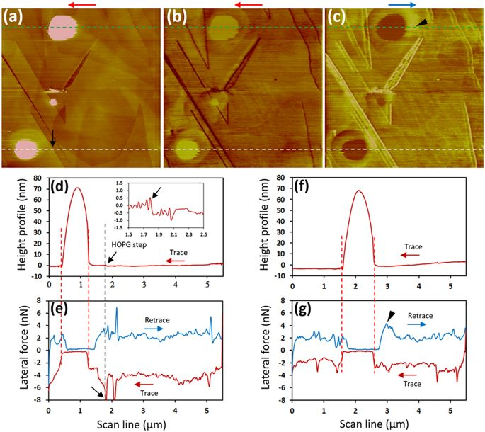 Peachy Lateral Force Microscopy Of Interfacial Nanobubbles Friction Wiring Cloud Apomsimijknierdonabenoleattemohammedshrineorg