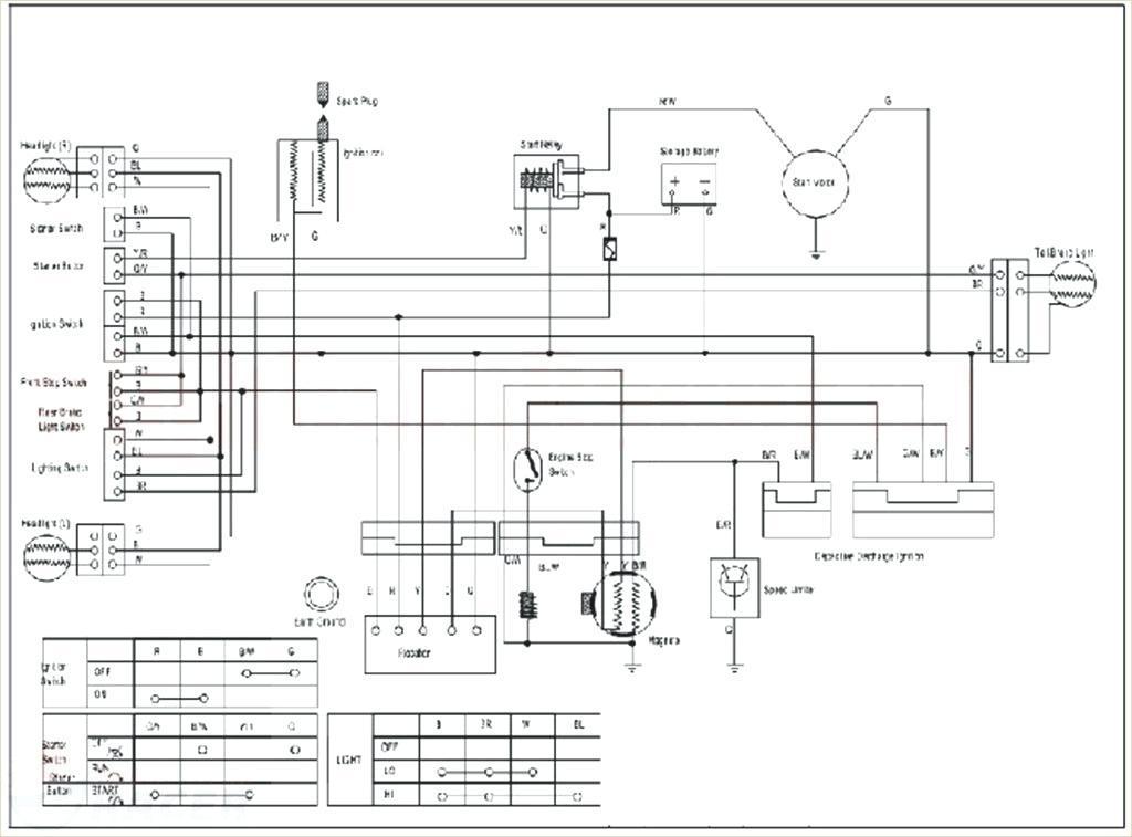 Stupendous Roketa 110Cc Atv Wiring Diagram Brandforesight Co Wiring Cloud Vieworaidewilluminateatxorg