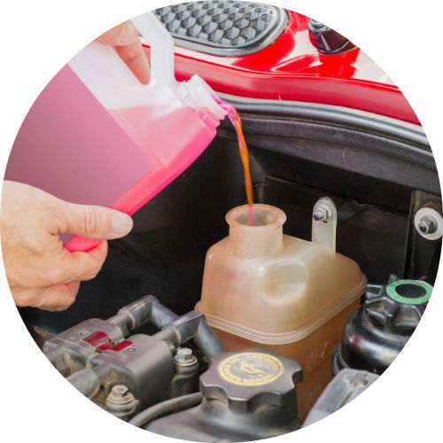 Prime Pouring Antifreeze Into Engine Coolant Reservoir B Toyota Vacaville Wiring Cloud Uslyletkolfr09Org