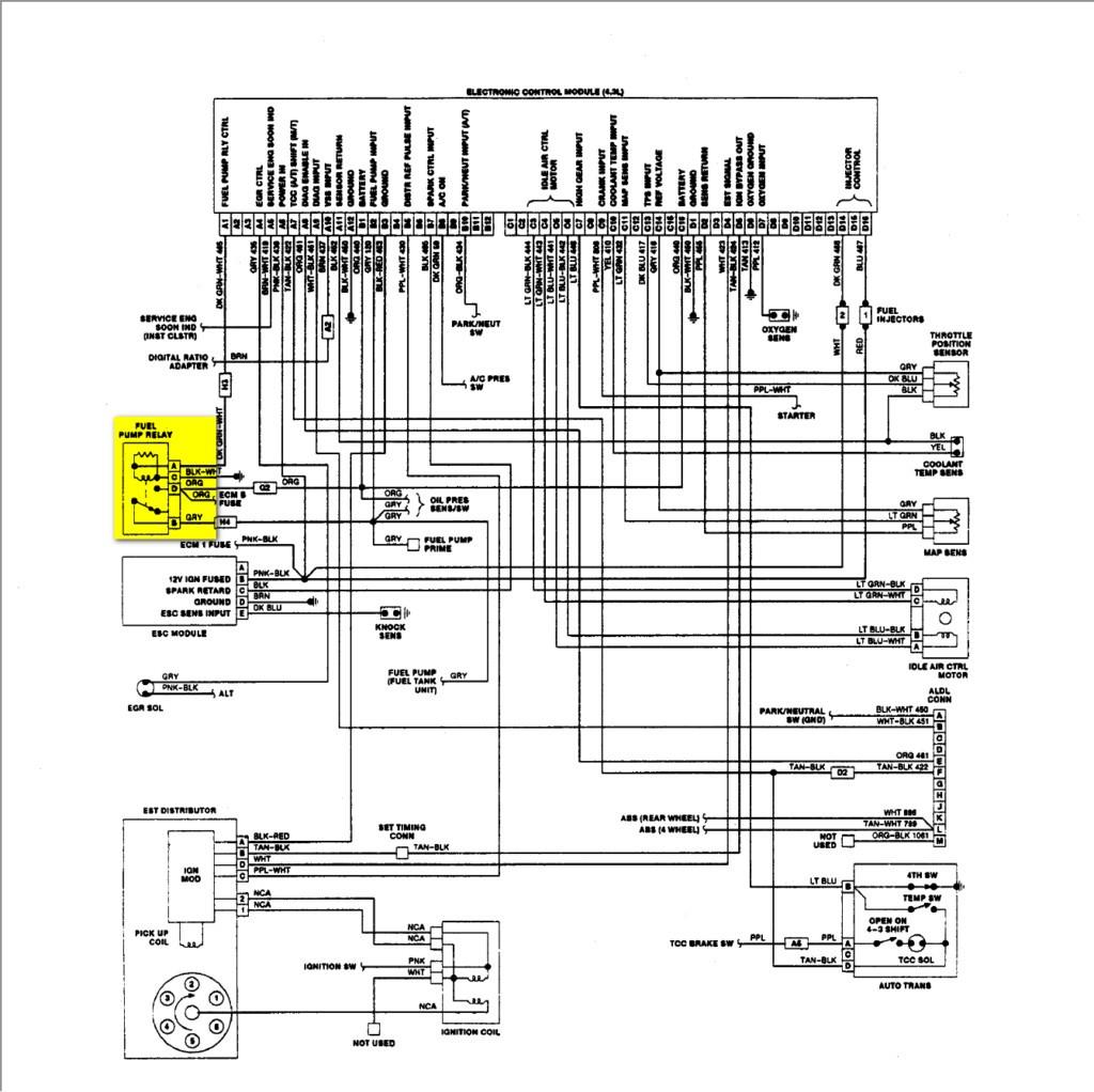 Suzuki Eiger Quadrunner Wiring Diagram