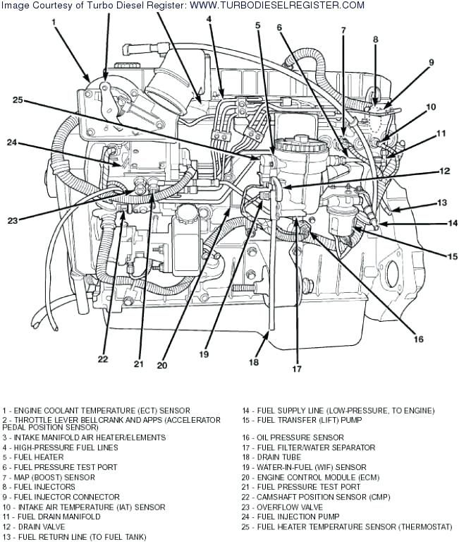 3 9 Liter Dodge Engine Diagram - Wiring Diagram Replace object-analyst -  object-analyst.miramontiseo.itobject-analyst.miramontiseo.it