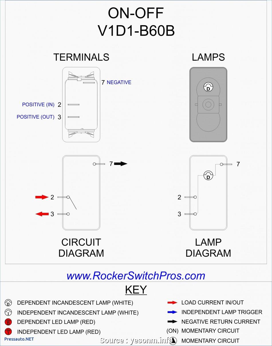Fine Spst Toggle Switch Wiring Diagram Basic Electronics Wiring Diagram Wiring Cloud Biosomenaidewilluminateatxorg
