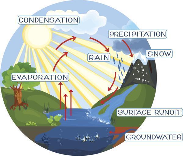 NN_6620] Explain Water Cycle With Diagram Wiring DiagramOsuri Dome Sapre Cajos Mohammedshrine Librar Wiring 101