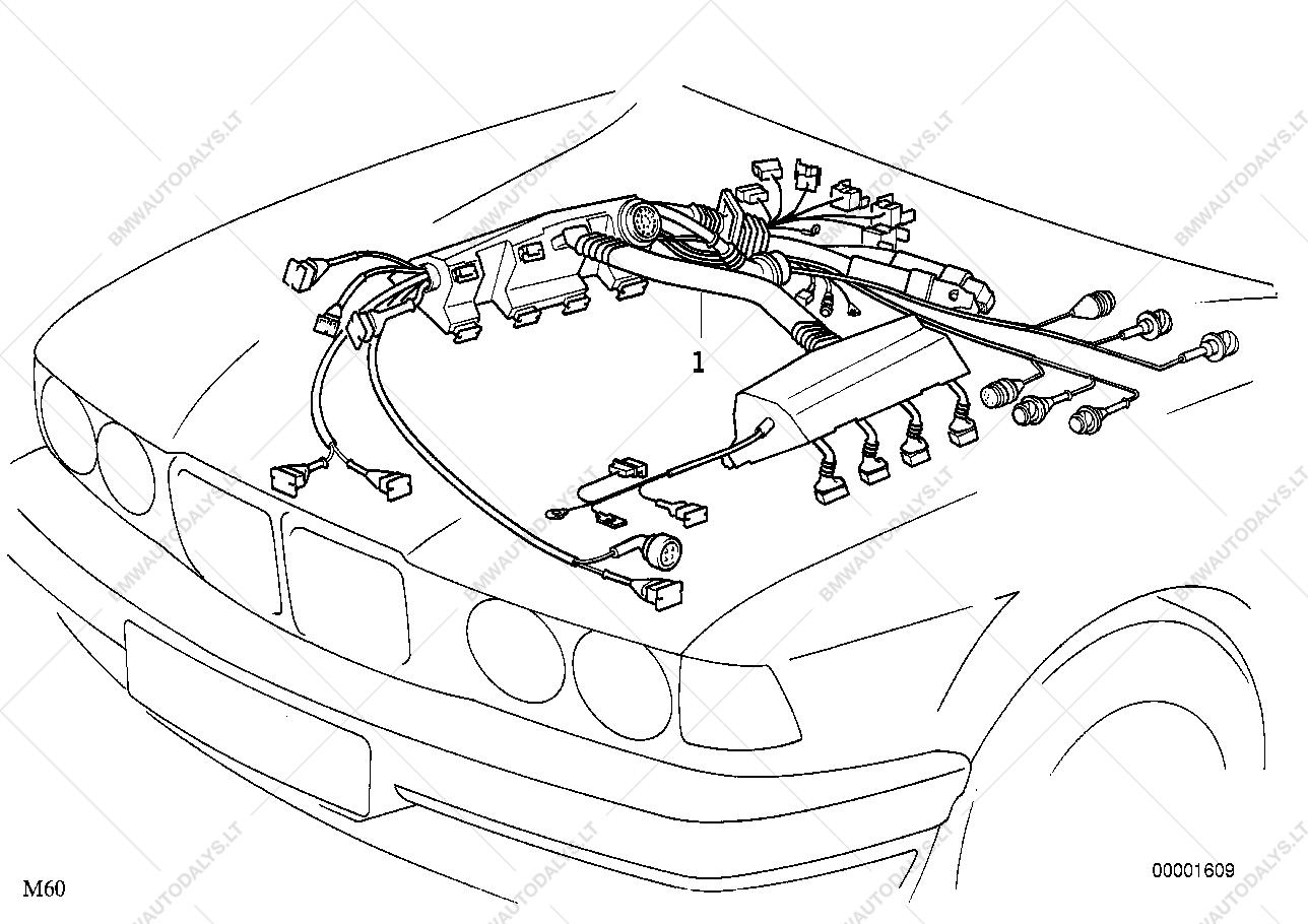 Bmw M62 Wiring Diagram - Wiring Diagram