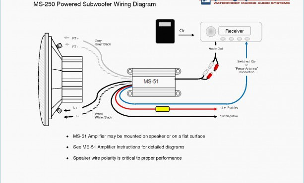 Dual Voice Coil Wiring Diagram from static-resources.imageservice.cloud