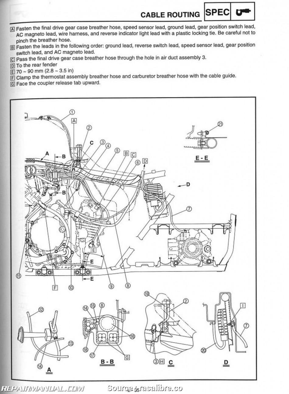 GE_1829] Wiring Diagram 2011 450 Yamaha Grizzly Free DiagramExpe Caba Vira Birdem Inama Mohammedshrine Librar Wiring 101