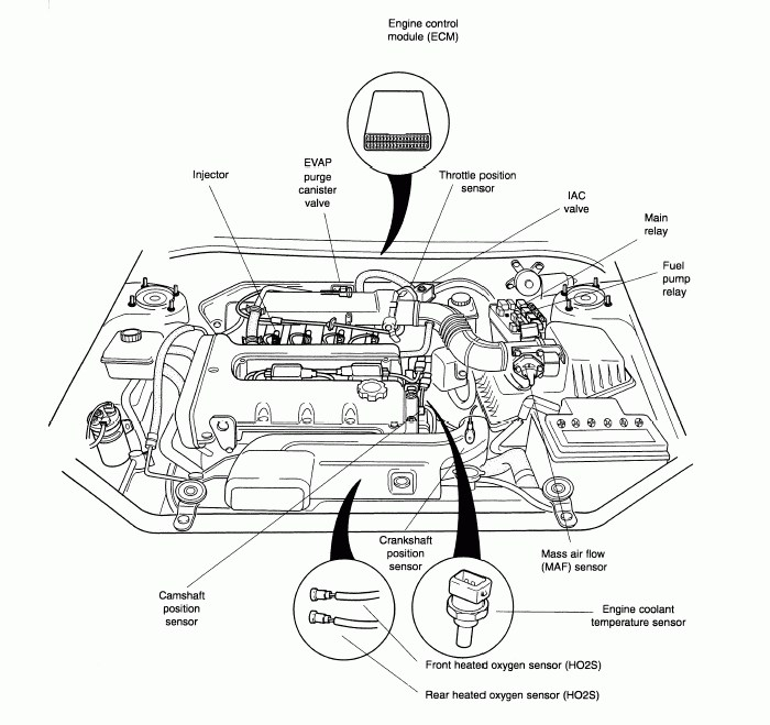 NZ_0498] 2001 Kia Rio Engine DiagramPhot Oliti Pap Mohammedshrine Librar Wiring 101