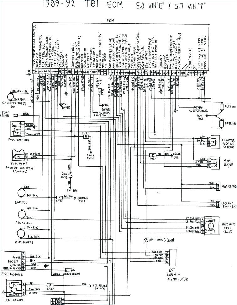 Toyota 3vze Wiring Diagram Wiring Diagram Level Level Lionsclubviterbo It