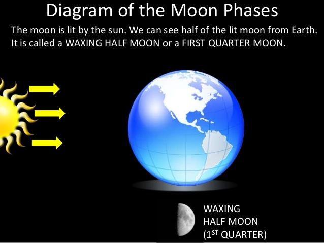 cy_2514] half moon diagram free diagram  hapolo props licuk heeve mohammedshrine librar wiring 101
