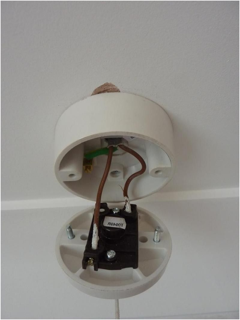 Fantastic How To Wire A Pull Cord Light Switch Diagram How To Wire A Pull From Wiring Cloud Overrenstrafr09Org