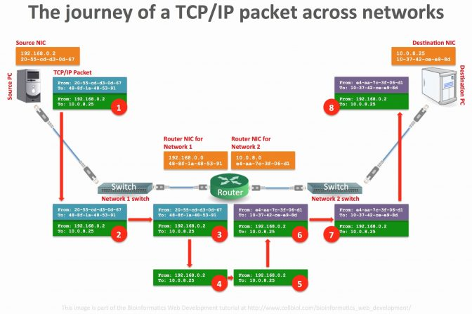 Tc 2333 Images Of Cat5 Poe Wiring Diagram Wire Diagram Images Inspirations Wiring Diagram