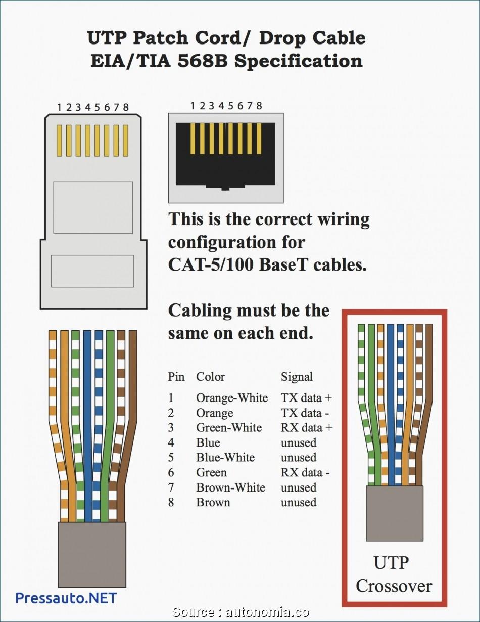 [SCHEMATICS_4CA]  ZM_5241] On Q Rj45 T568B Wiring Diagram Key Schematic Wiring | T568 Wiring Diagram |  | Stre Pead Neph Sapre Phae Mohammedshrine Librar Wiring 101
