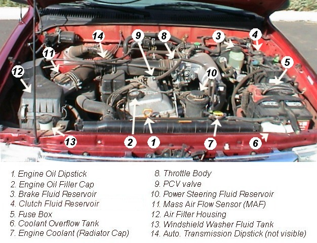 Toyota Tacoma 2 7 Engine Diagram Boss Rt3 Wiring Diagram Stb9602 Bmw Ignition Au Delice Limousin Fr