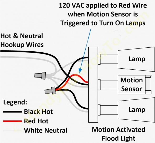 Remarkable Wiring Touch Lamp Sensor Basic Electronics Wiring Diagram Wiring Cloud Licukosporaidewilluminateatxorg