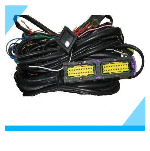 Sensational China Ecu Wiring Harness For Cng Lpg Ecu Custom Cable Assembly Wiring Cloud Itislusmarecoveryedborg