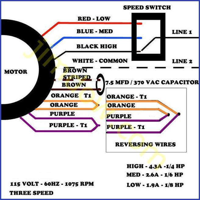 Superb Single Phase 3 Speed Motor Wiring Diagram Basic Electronics Wiring Wiring Cloud Gufailluminateatxorg