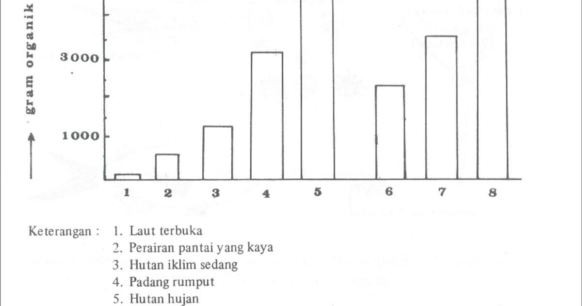 At 3349 Contoh Diagram Hutan Mangrove