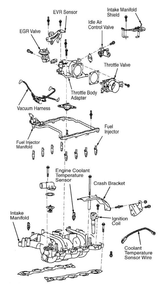 2007 Ford 4 6 Engine Diagram Wiring Diagram Van Network B Van Network B Networkantidiscriminazione It