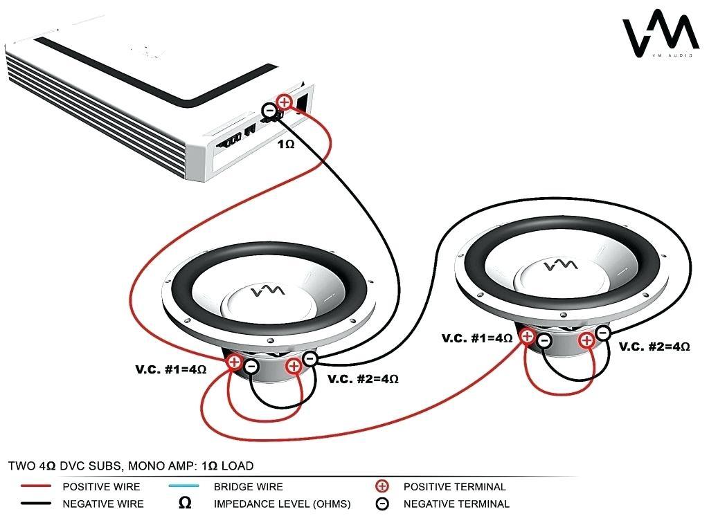 Prime Jl Audio Wiring Diagram Radio Cavity Dakotanautica Com Wiring Cloud Filiciilluminateatxorg