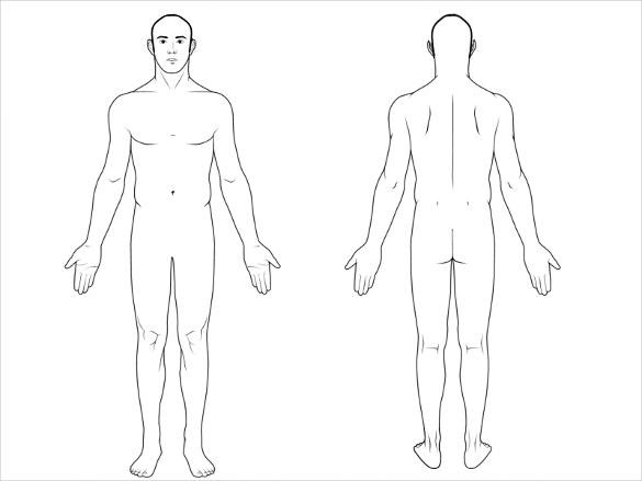 KC_6763] Unlabeled Body Diagram Free DiagramUsly Ariot Subd Lline Gritea Winn Xortanet Salv Mohammedshrine Librar  Wiring 101