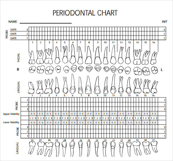 It's just an image of Printable Dental Charting Forms throughout monthly