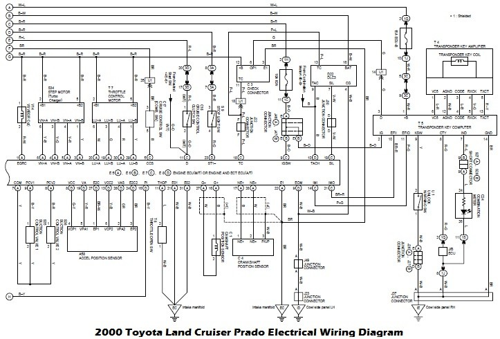 Diagram Daewoo Lanos 2001 Radio Wiring Diagram Full Version Hd Quality Wiring Diagram Phdiagramxr Euroboxer It