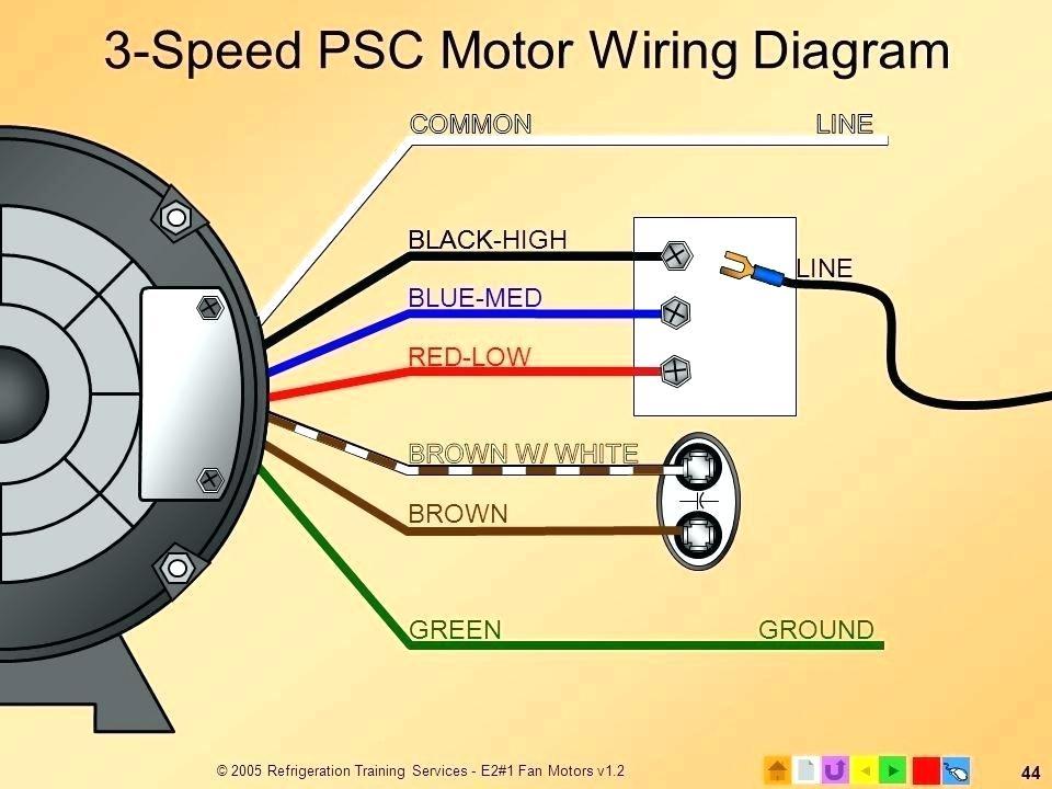 Marathon 3 Phase Motors Wiring Diagram - Wiring Diagram