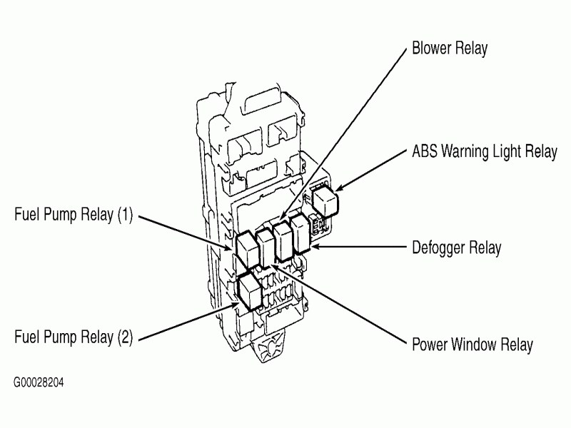 Download Schema 2002 Mitsubishi Montero Limited Engine Diagram Hd Version Insectdiagram Bruxelles Enscene Be