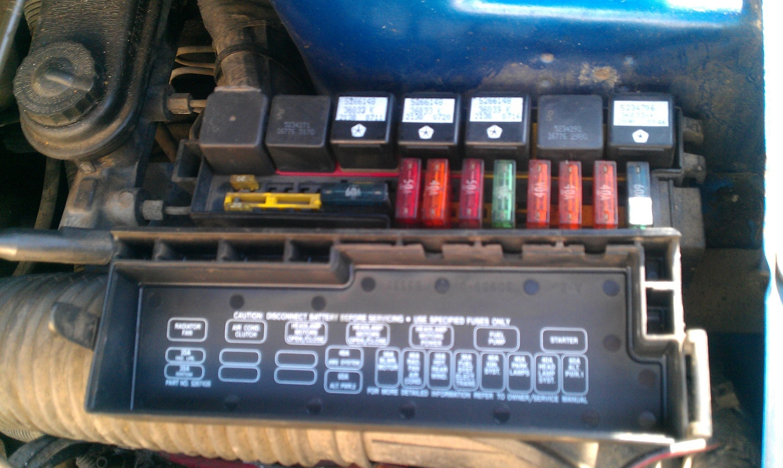 Astonishing Neon Fuel Pump Wiring Harness Wiring Library Wiring Cloud Picalendutblikvittorg