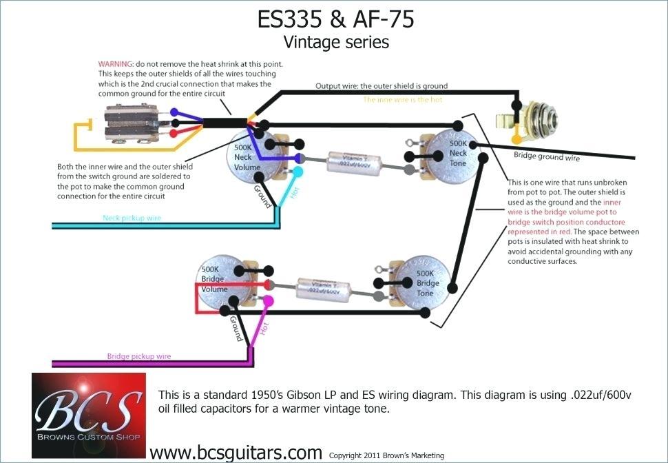 Admirable Peavey Guitar Wiring Diagrams Wiring Diagram Wiring Cloud Ostrrenstrafr09Org