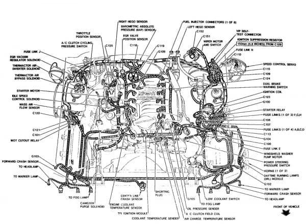 2001 Ford Mustang V6 Engine Diagram Wiring Diagrams Database Random Random Urbani Lacertosa It