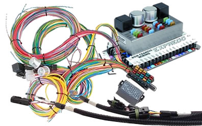 Magnificent Automotive Wiring Harnesses At Summit Racing Wiring Cloud Cranvenetmohammedshrineorg
